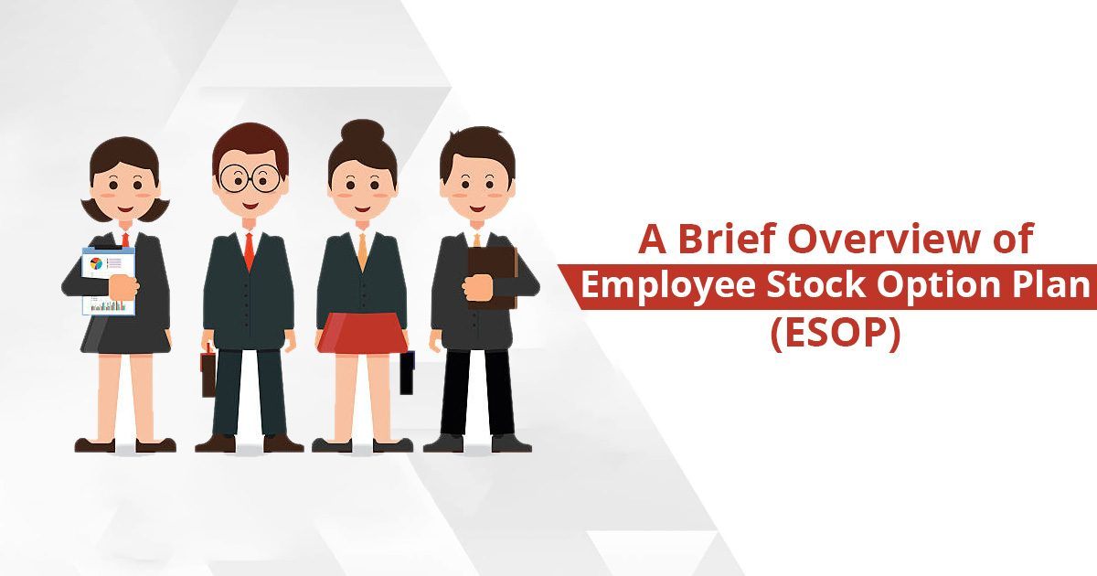 Employee Stock Option Plan